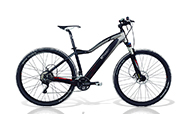 EMotion Evo 29er